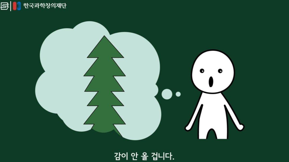 20200808_174208.jpg 초딩도 이해하는 태양광 때문에 잘린 나무가 하는일.jpg