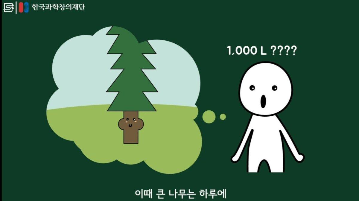 20200808_174135.jpg 초딩도 이해하는 태양광 때문에 잘린 나무가 하는일.jpg