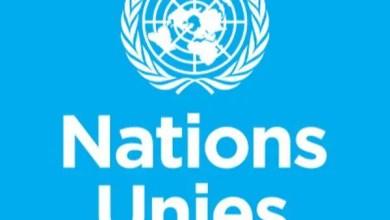 Haïti : Journalistes victimes de brutalités policières, l'ONU préoccupée - brutalités policières, journalistes, ONU