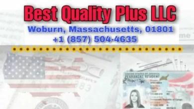 USA: Best Quality Plus LLC, la référence en matière de services Juridiques – TPS, green card, naturalisation... - États-Unis, Green Card, Haïtiens, Naturalisation, Tps