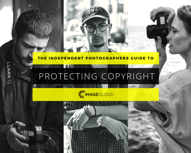 Protecting Copyright – The Independent Photographers Guide – Vol.1