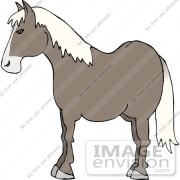 gray horse with white hair clipart