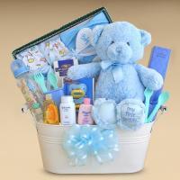 Gift Baskets Created : Baby Boy Gift Basket