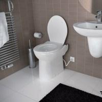 Toilet Upflush Bathroom Designs | Joy Studio Design ...