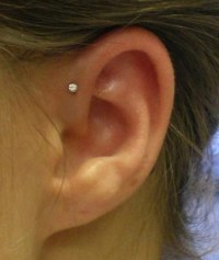 "16G 1/4"" 6mm Triple Forward Helix Stud Earring Cartilage 2 ..."