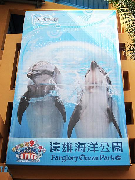 花蓮の水族館にLET'S GO! | 臺北ナビ