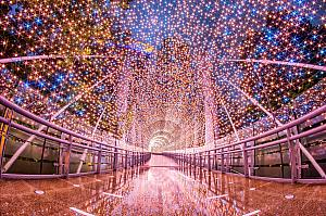 11/15-2020/1/1 「2019新北歡樂耶誕城」   臺北ナビ