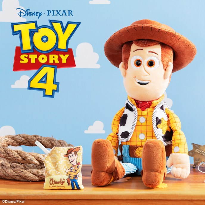 Woody: Reach for the Sky
