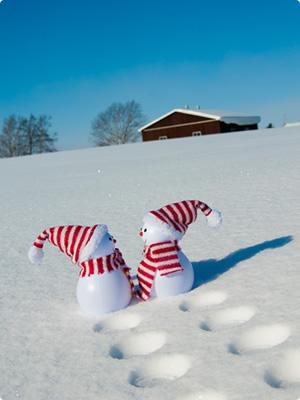 冬の寫真 - 寫真素材のimagenavi