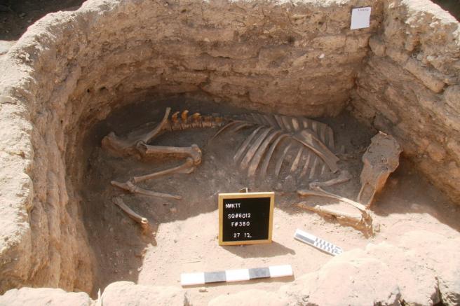 Restos encontrados en la ciudad perdida de Luxor