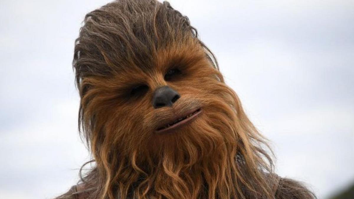 Una tuitera se vuelve viral tras mostrar cómo quedó su peluche de Chewbacca. de 'Star Wars'. después de lavarlo