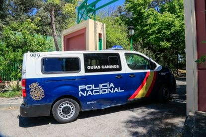 The police continue the searches at the house of Jose Luis Moreno, June 29, 2021