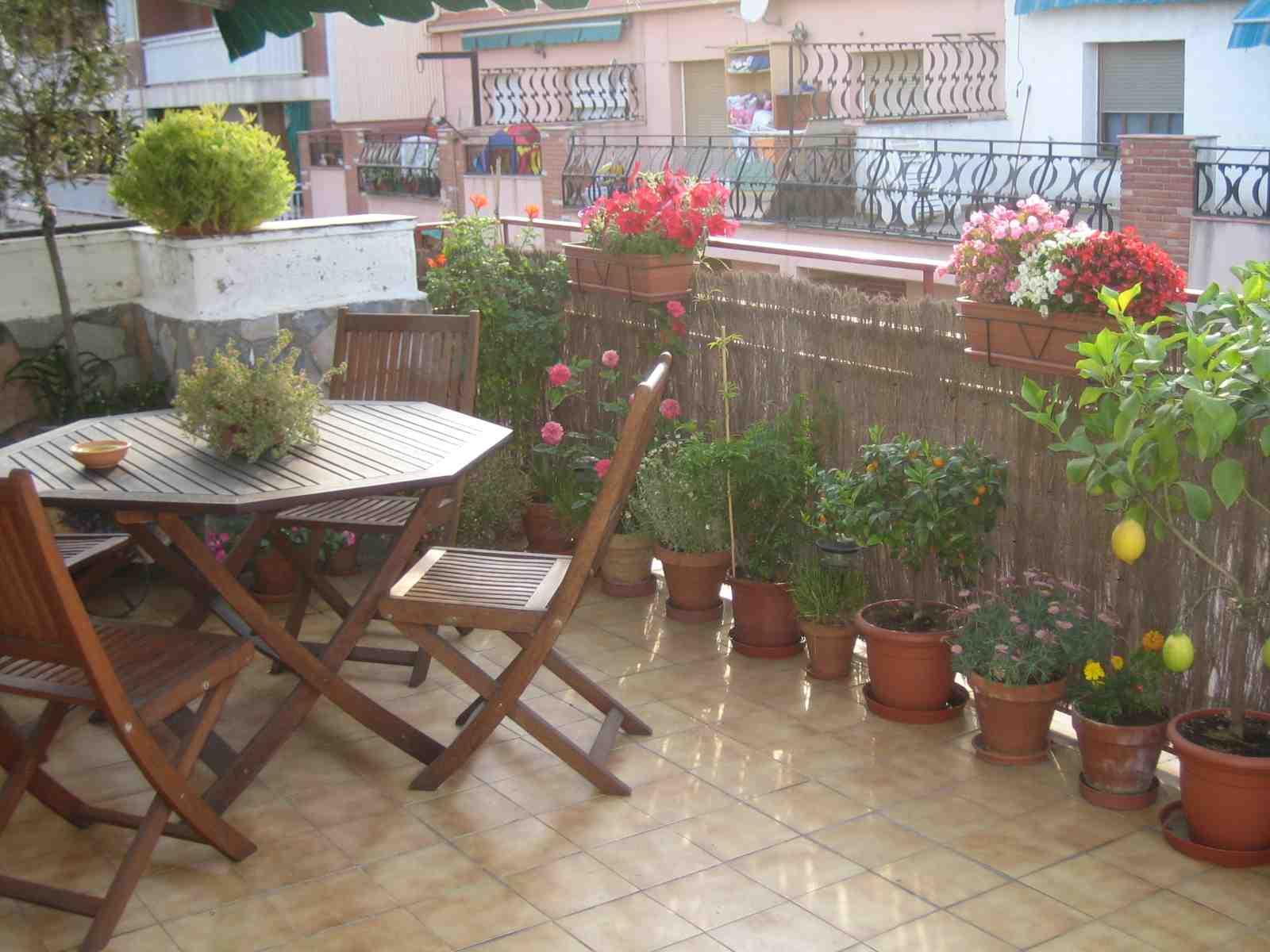 Sugerencias para decorar terraza y plantas