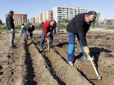 Vecinos del barrio de Benimaclet (Valencia), trabajando ayer la tierra en el huerto de la polémica.-Juan Navarro
