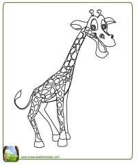 Dibujos Infantiles De Jirafas Para Colorear Paginas Para