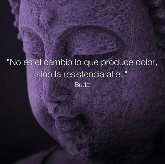 Frases de Equilibrio Budistas Zen Positivas para Reflexionar