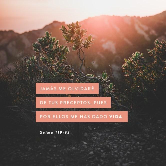 Frases Cristianas Para Jóvenes Cortas de Motivación