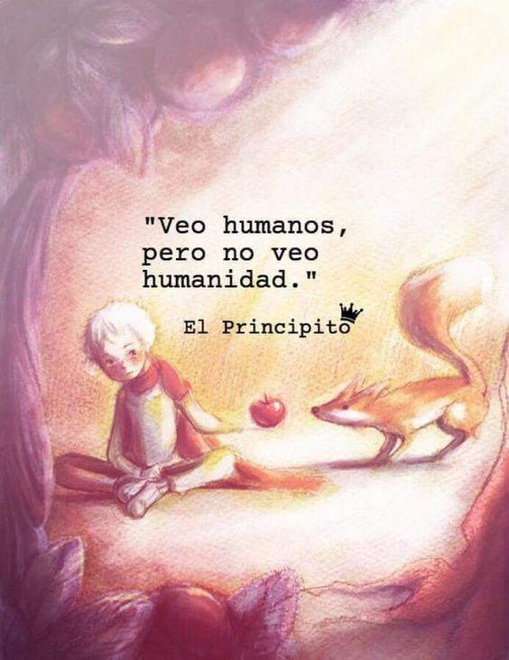 Frases Del Principito De Amistad El Zorro Y La Rosa