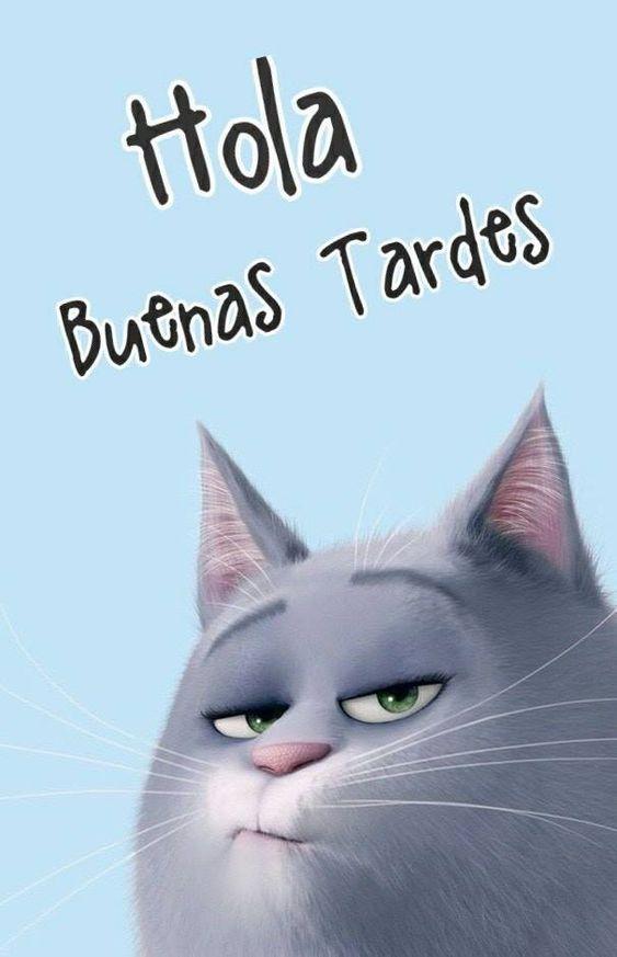 Imágenes de Buenas Tardes Con Frases Bonitas