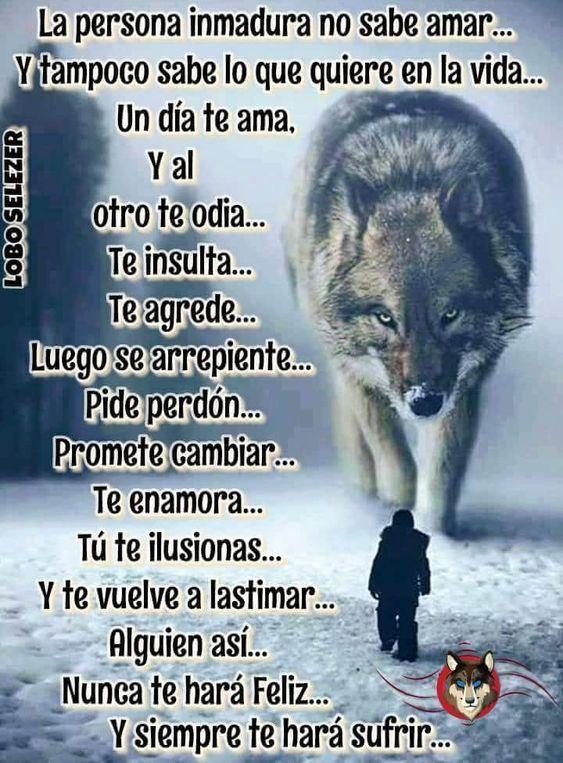 Frases De Lobo Frase De Amor