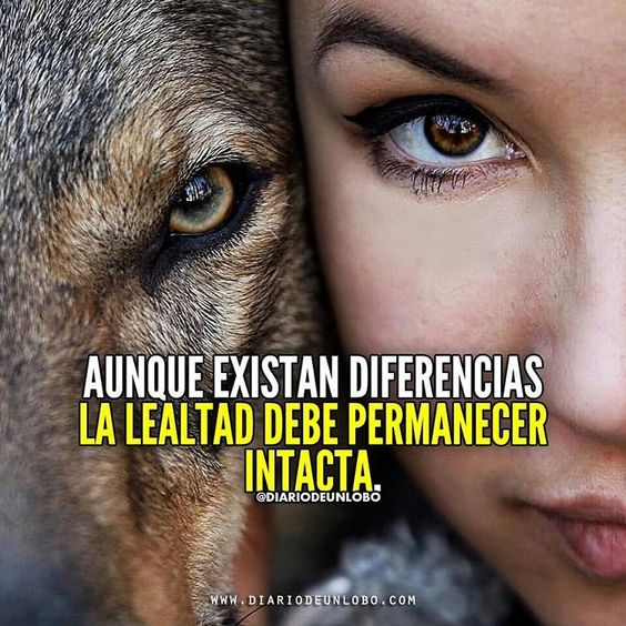 Imágenes de Lobos Guerreros con Frases de Reflexión