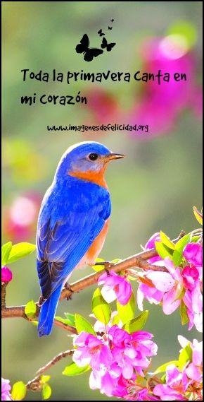 Imágenes con Frases Feliz Día de la Primavera y Estudiantes