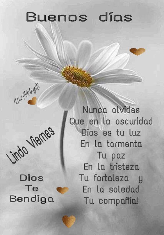 Buenos Días Feliz Viernes Con Bonitas Flores