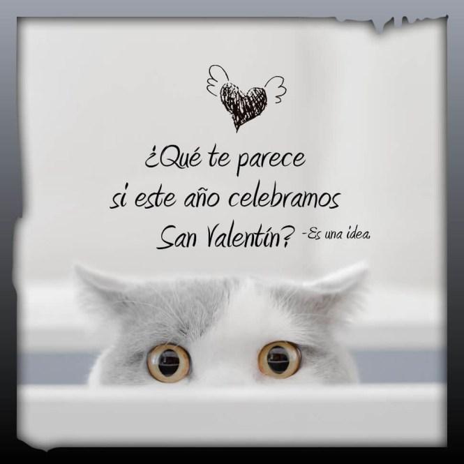 Frases de Feliz San Valentin de AMOR y AMISTAD
