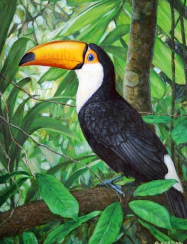 Imagen cuadros de aves pintadas al oleo