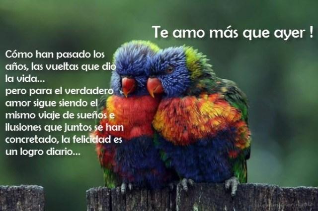 Imagenes De Aves Con Lindos Mensajes De Amor Para Dedicar