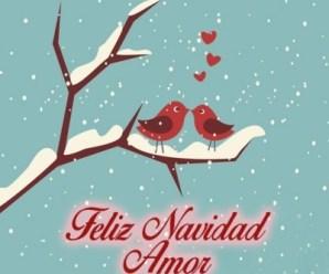 Imagenes De Aves Y Corazones Feliz Navidad Amor
