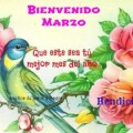 Imagenes de Aves Bienvenido Marzo