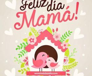 Carteles De Aves Con Mensajes Feliz Día Mamá