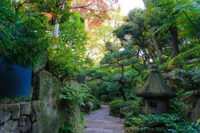 El jardín del Museo Nezu, Japón, los mejores jardines del mundo