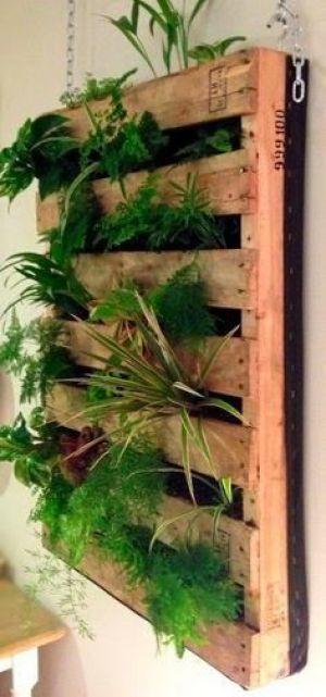 Algunas imagenes con ideas para tu jardin vertical