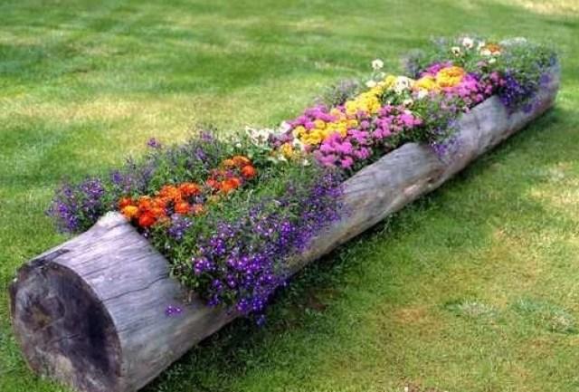 Flores sembradas en un tronco para decorar el jardin