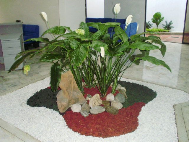 Foto idea para decorar jardin interior