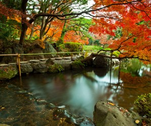 Los Jardines Mas Romanticos Del Mundo