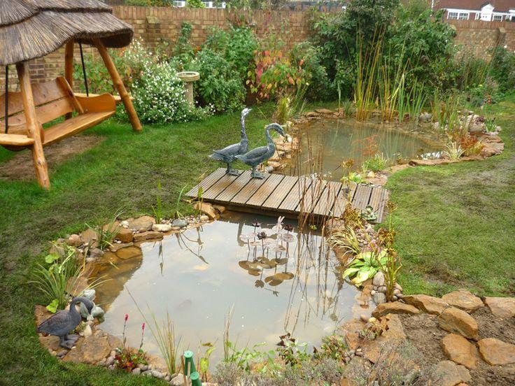 estanque de jardin