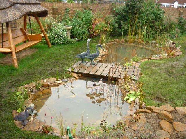 imagenes de estanques silvestres para el jardin