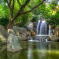 Imagenes del Jardín Chino de la Amistad en Sidney