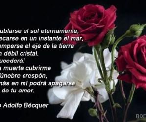 Imagen de Rosas Con Un Bello Poema De Amor