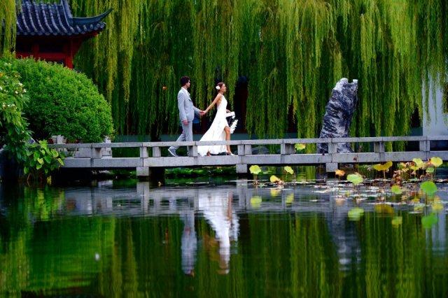 Imagenes bonitas del jardin chino de la amistad en Sidney