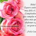 Imagenes de Rosas Rosadas Con Mensajes Bonitos de Cumpleaños