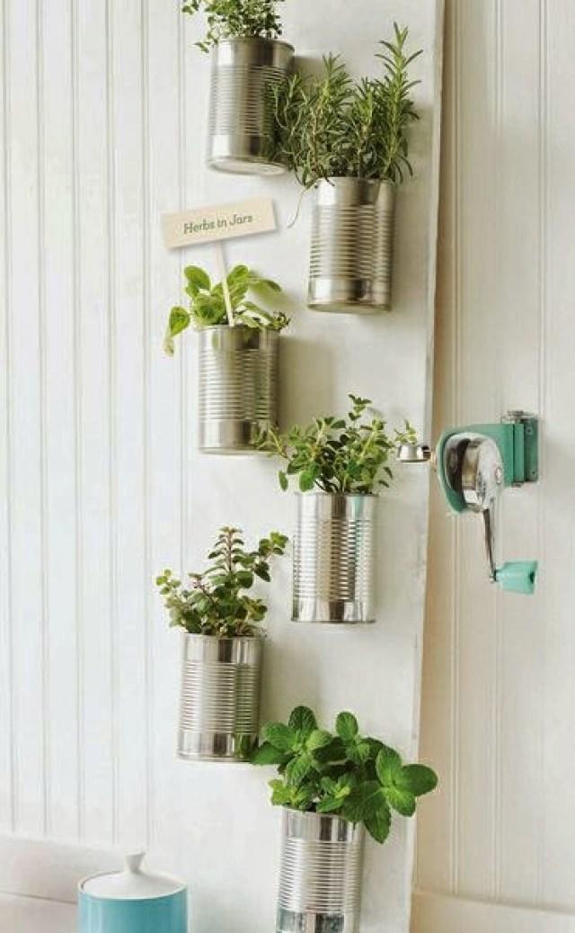 Imagenes jardin vertical interior casero