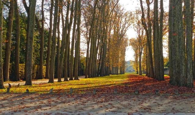 Jardines de Versalles Colores Otoño Fotos