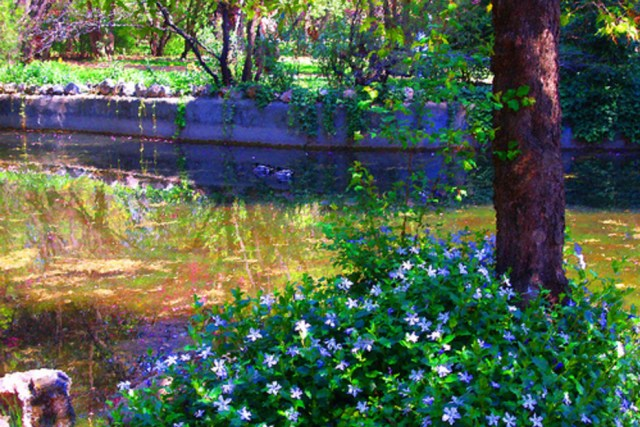 jardines de flores el capricho Madrid