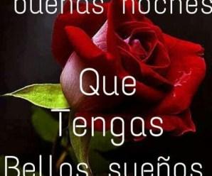 Imagen De Una Rosa Roja Buenas Noches Para Whatsapp
