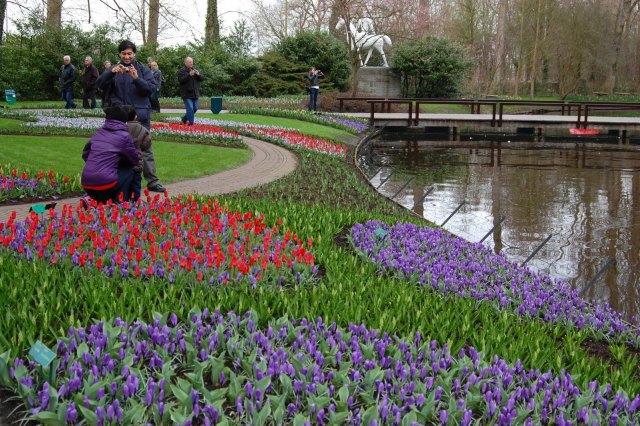Imagenes De Los Jardines de Keukenhof - Países Bajos