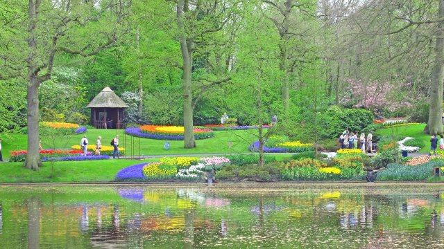 Imagenes de jardines de flores para fondo de pantalla